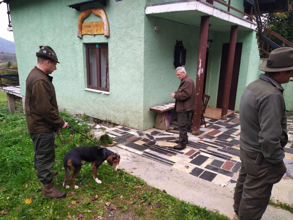 Ocjenjivanje oblika i ispita prirođenih osobina pasa goniča