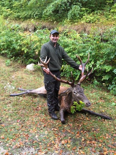 Odstrjel jelena na Učki