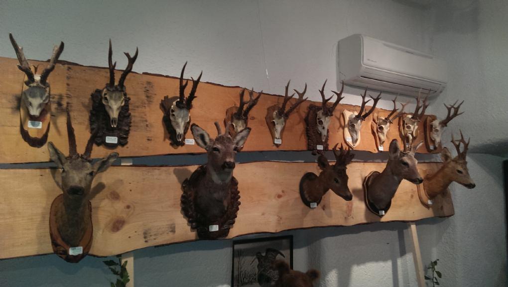 2. izložba lovstva otoka Krka
