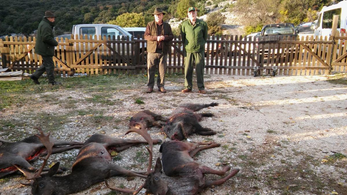 Gostinjski lov na otoku Cresu