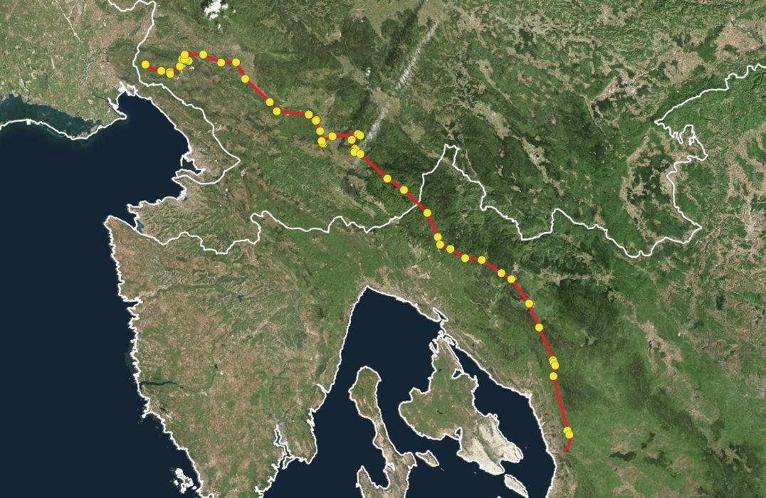 GPS-ogrlicom obilježeni čagalj iz Slovenije u disperziji prema Dalmaciji?